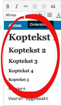 H1 tot H6 koppen in WordPress