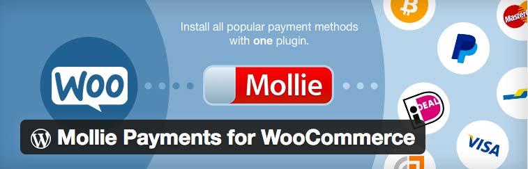 Mollie Woocommerce koppeling maken