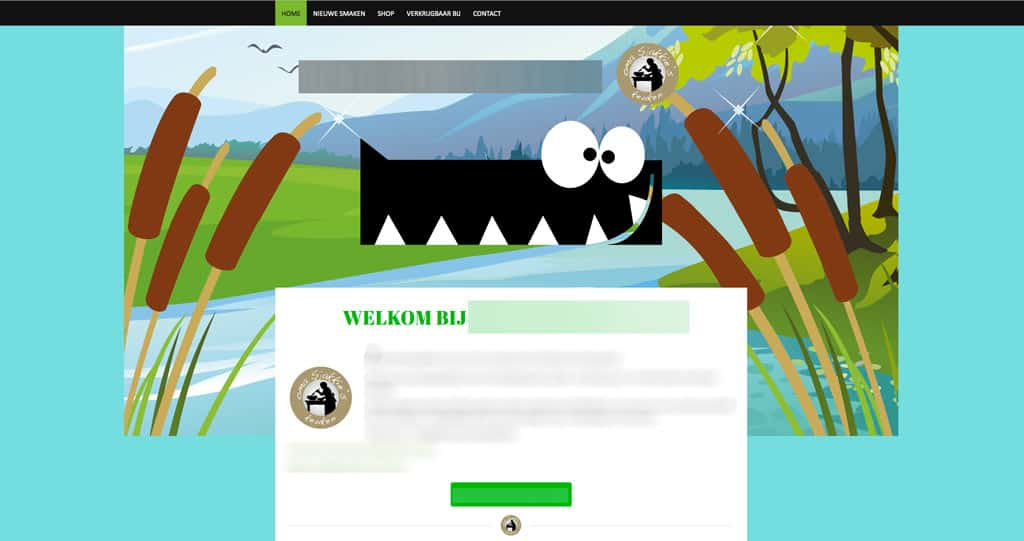 Design KPN WebsitCoach